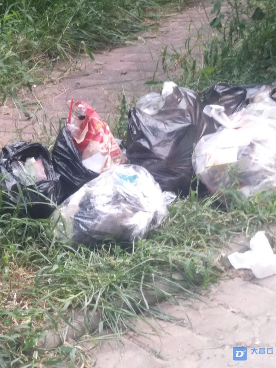 齐鲁涧桥小区不放垃圾桶