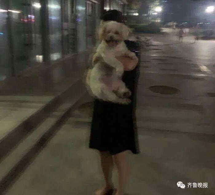 罚款两千!济南一女子小区遛狗被民警拦下