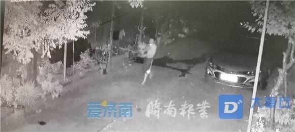 拘留5日!章丘惊现偷花大盗,顺手搬走他人家的一盆榕树!