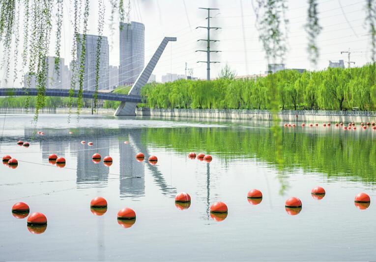 小清河上漂浮的这些小红球是干啥的?