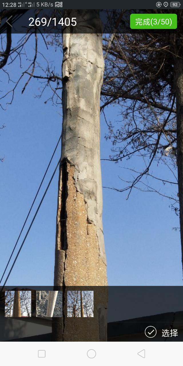文祖这些电线杆,裂缝大来水泥粘,年龄大约三四十,有